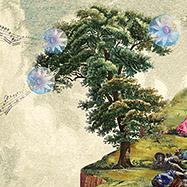 """Flor felicitat de """"Viatges i flors"""" de Mercè Rodoreda"""